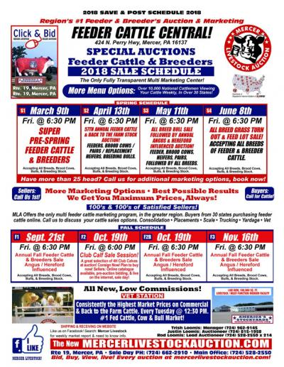 Feeder Cattle Central  Special Auctions Feeder Cattle and Breeders